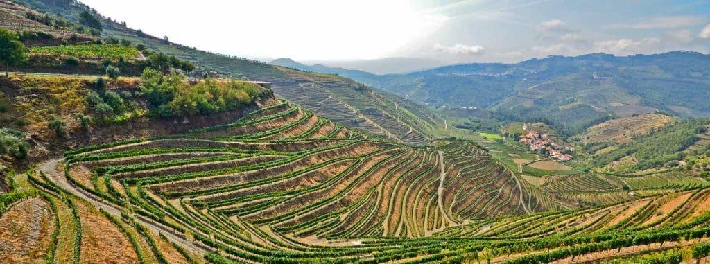 Weinkellerei Meraner Vista Alegre